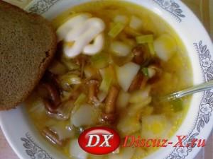 Грибной суп из маринованных опят рецепт